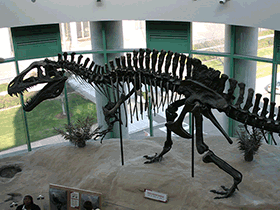 Skelett des Acrocanthosaurus / © Ryan Somma (Flickr.com). Creative Commons 2.0 Generic (CC BY-SA 2.0)