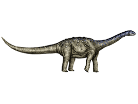 Aeolosaurus / © Karkemish. Creative Commons 3.0 Unported (CC BY-SA 3.0)