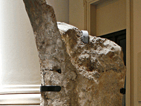 Femur des Argentinosaurus / © Tom Duca (Flickr.com). Creative Commons 2.0 Generic (CC BY-SA 2.0)