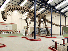 Skelett des Argentinosaurus / © © Sellers et al. Creative Commons 4.0 International (CC BY 4.0)