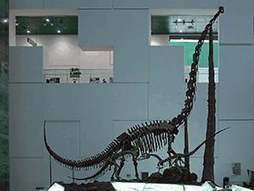 Chuanjiesaurus / © Yan Li (Flickr.com). Creative Commons 2.0 Generic (CC BY-NC-SA 2.0)