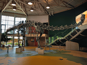 Skelett des Diplodocus / © Mark Stevens (Flickr.com). Creative Commons 2.0 Generic (CC BY-NC-SA 2.0)