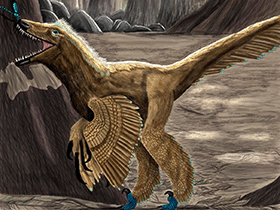 Graciliraptor / © vasix (deviantart.com). Creative Commons 3.0 Unported (CC BY-NC-ND 3.0)