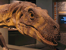 Modell des Herrerasaurus / © Brian Smith (Flickr.com). Creative Commons 2.0 Generic (CC BY-NC-SA 2.0)