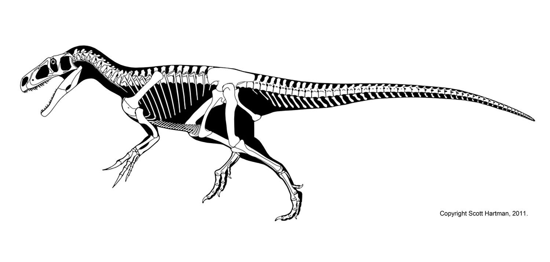 Marshosaurus bicentesimus - Beschreibung, Dinodata.de