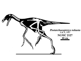 Protarchaeopteryx / © Jaime Headden (Deviantart.com). Creative Commons 3.0 Unported (CC BY-NC-ND 3.0)