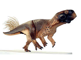 Modell des Psittacosaurus / © Vinther et al. Creative Commons 4.0 International (CC BY 4.0)